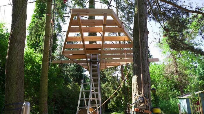 das erste Modul des Bodengerüstes wird zwischen zwei Bäumen befestigt