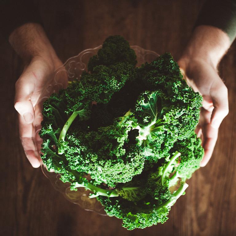 Hände halten eine Portion Grünkohl