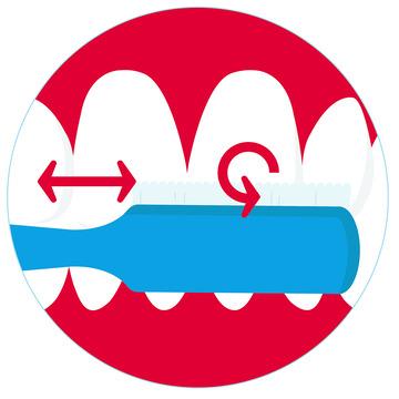 Zahnbürste reibt über die Vorderseite der Schneidezähne