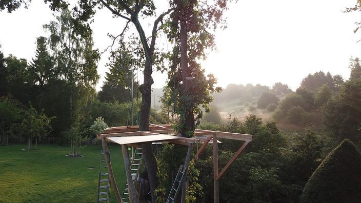 die fertige Plattform des Baumhauses