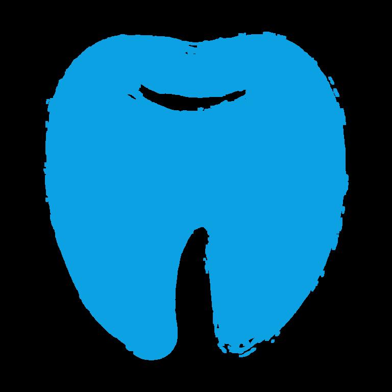 gezeichnete Darstellung eines Zahns