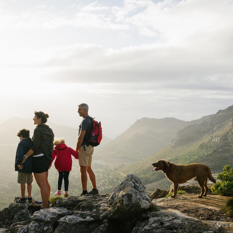 vierköpfige Familie mit Hund sieht während einer Bergwanderung über das Tal