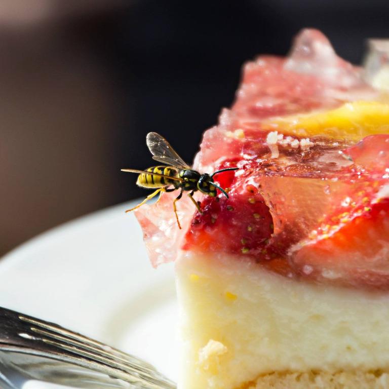 Wespe sitzt auf einem Stück Erdbeerkuchen