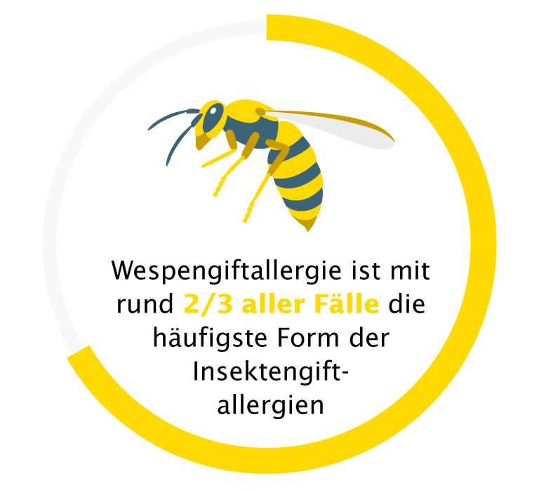 Wespengiftallergie ist die häufigste Insektengiftallergie