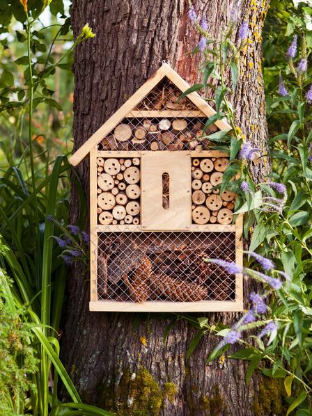 Insektenhotel hängt an einem Baum im Garten
