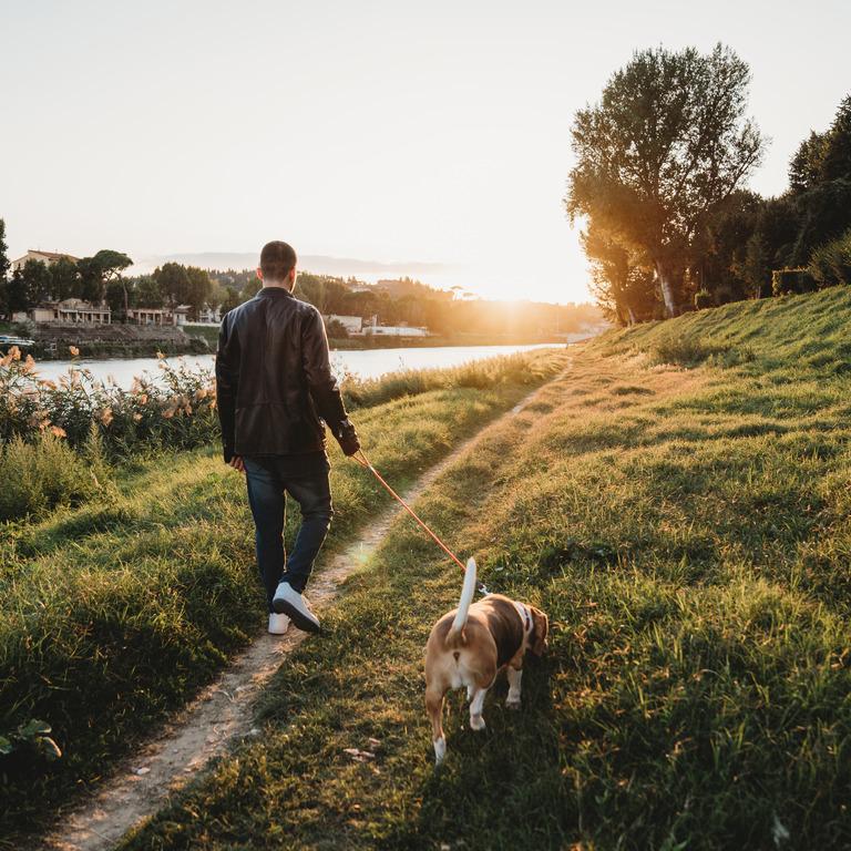 Mann geht mit Hund im Sonnenuntergang spazieren.