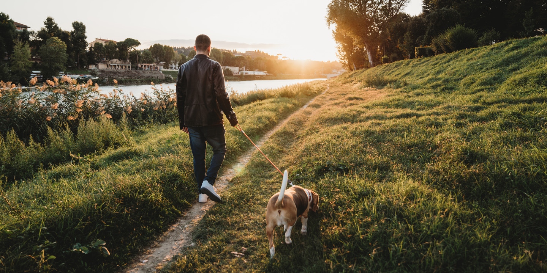 So gesund ist das Spazierengehen