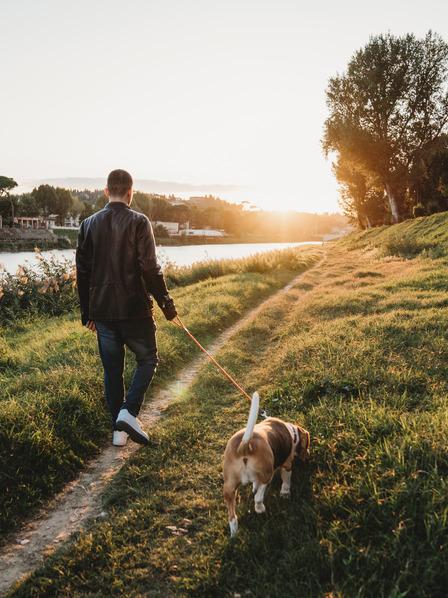 Mann geht mit Hund am Fluss spazieren.