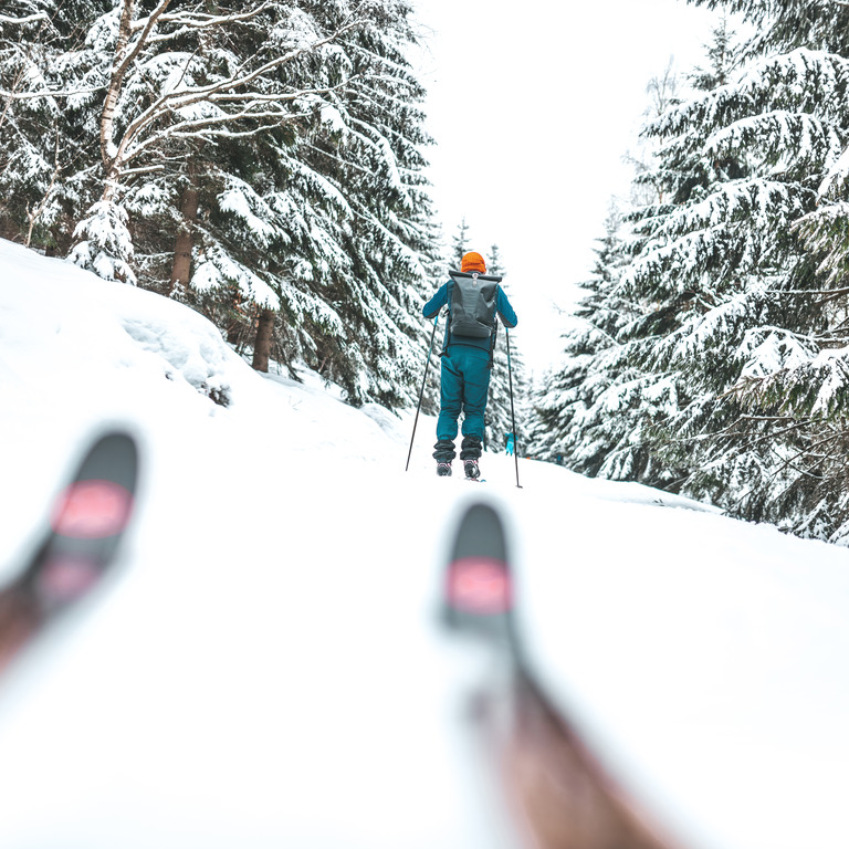 Langläufer im Wald