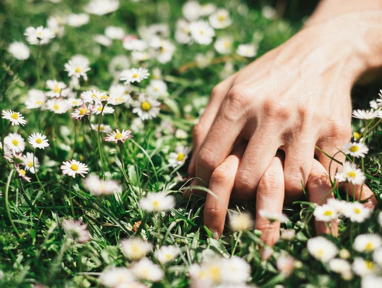 ineinander verschränkte Hände eines Mannes und einer Frau auf einer Wiese