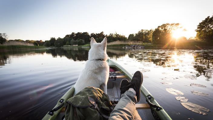 Mann sitzt mit seinem Hund in einem Boot