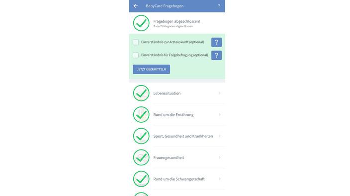 ausgefüllter Fragebogen der BabyCare-App