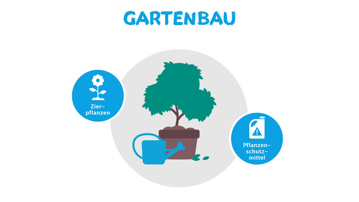 Infografik Allergieauslöser Gartenbau