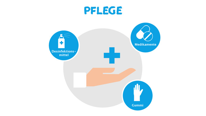 Infografik zum Thema Berufsberatung im Pflegberuf für Allergiker