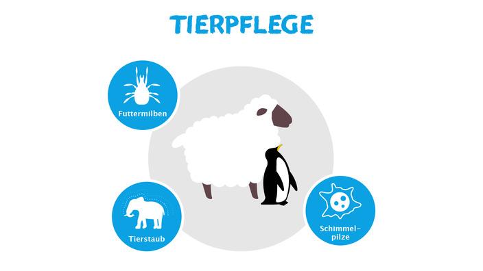 Infografik Allergieauslöser Tierpflege