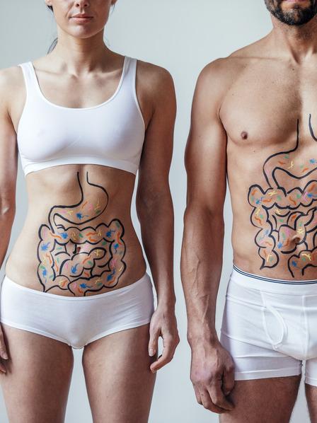 Frau und Mann stehen nebeneinander in Unterwäsche und der Magen-Darm-Trakt ist mit Stift auf ihrem Körper eingezeichnet